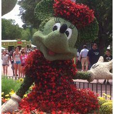 Epcot flower Minnie