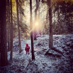 Last child in the woods Last Child, Taking Pictures, Woods, Children, Nature, Outdoor, Outdoors, Boys, Woodland Forest