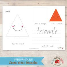 Busy Little Bugs: Learn about triangles worksheet