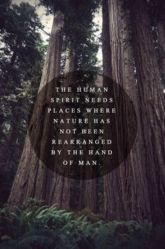 nature not rearranged