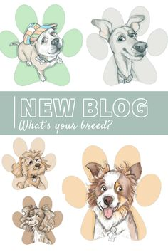 TELL US YOUR BREED: Ever wondered what it would be like to be a dog? Us too! Find out what breed you'd be with our personality checker in this weeks new blog post at: News Blog, Caricature, Dog Breeds, Personality, Cartoon, Illustration, Dogs, Animals, Animales
