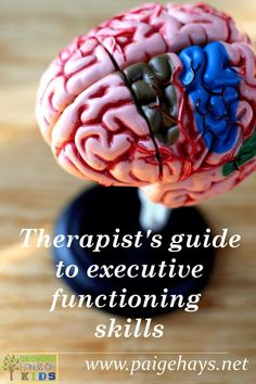 A therapist's guide to executive function skills, perfect for Occupational Therapists, Physical Therapists and Speech Therapists wanting to learn about executive functioning skills in the pediatric setting.