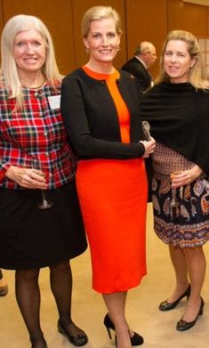 Career woman: The Countess of Wessex (centre) at a Women in Hedge Funds meeting in New York this month described herself as a 'rare breed'