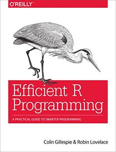 Efficient R Programming: A Practical Guide to Smarter Programming [Full eBook]