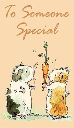 """""""To someone special"""" Guinea Pig Illustration"""