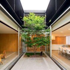 Szirtes House by Chenchow Little Architects: Eastern Suburbs, NSW www.chenchowlittle.com or @chenchowlittle Photography: John Gollings