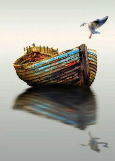 Row Boats On Water Reflection Photography Wallpapers) Old Boats, Small Boats, Boat Art, Boat Painting, Boat Plans, Wooden Boats, Fishing Boats, Belle Photo, Oeuvre D'art