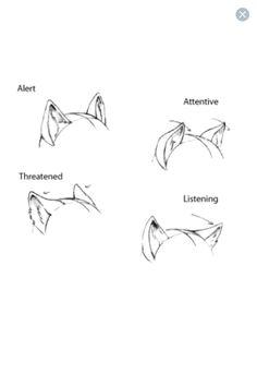 Wolf Ears Drawing : drawing, Ideas, Ears,, Drawing, Tutorial,, Drawings