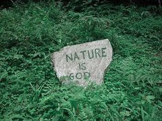 If God is within everything, then Nature is God. You come into joy in nature and it feels like love and joy and ease and touching God and goodness! Sombra Lunar, Percy Jackson, Half Elf, The Blue Boy, Grover Underwood, Verde Vintage, Bastet, The Wicked The Divine, The Ancient Magus