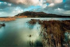 Kerry manages to look exotic once again. This time it's Caragh lake and the photographer is @eborbenson
