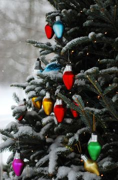 This is one of my favorite Christmas photos...snow, gorgeous tree..bright light ornaments...wish I had one...  ~julie.anna, via Flickr