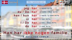Урок 2. Глагол have (иметь). Датский язык за 7 уроков для начинающих. Ел...