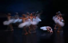 "Photo ""Swan Lake"" by Osher Partovi on 500px"