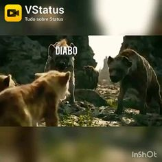 Videos Catolicos, I Love You God, Dark Anime, Bible, Youtube, Prayer Pictures, Pictures Of God, Worship The Lord, Powerful Quotes