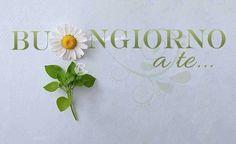 ❤️Buongiorno❤️ Be Different www. Gd Morning, Good Morning Good Night, Happy Day, Italy, Margarita, Mornings, Quotes, Gardening, Humor