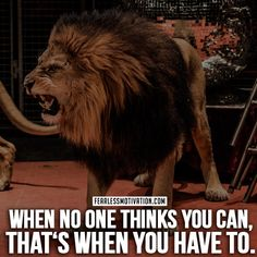 30 Motivational Lion Quotes In Pictures - The Best Lion Picture Quotes on Courage, Strength and determination to succeed. Life Quotes Love, Badass Quotes, True Quotes, Qoutes, True Sayings, Quotes Quotes, Motivational Quotes For Men, Inspirational Quotes, Motivating Quotes