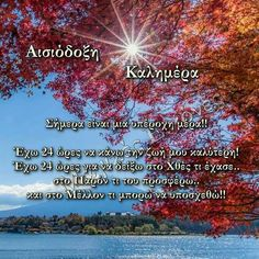 Gratitude, Good Morning, Faith, Love, Paracord, Attraction, Flowers, Buen Dia, Amor