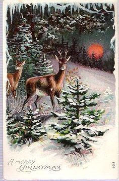 "PC A MERRY CHRISTMAS Deer in Woods OTTO SCHLOSS Germany Embossed Postcard 1043 - Attractive pre-World War One embossed chromolith.  ""Made in Germany"" with logo of Otto Schloss, Berlin, Germany postcard publisher in rear bottom corner."