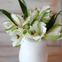 50 ideas for everything floral! Celebrate Spring and florafy your life! - The Creek Line House