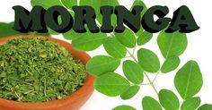 Moringa para curar enfermedades, adelgazar o mejorar el rendimiento con tu pareja