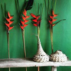 @EttingerLondon The beauty of Seychelles nature❤️ #Nature#awesomenature#lovenature #Seychelles #paradise#BeautifulIsland #Summertime #holiday #summer2015 #holidayseason #MyColourOfSummer  #beachlife#IndianOcean #thissummer #DCmoments #OriginalSummer #MBPerfectParadise