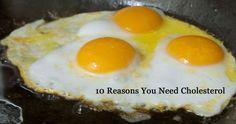 10 Reasons You Need Cholesterol