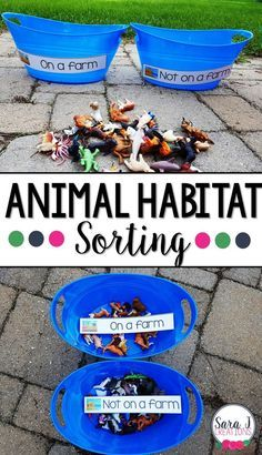 An animal habitat sort is a fun way to practice animals that live on a farm and animals that live in other places. An animal habitat sort is a fun way to practice animals that live on a farm and animals that live in other places. Farm Animals Preschool, Preschool Themes, Preschool Lessons, Farm Animal Crafts, Preschool Printables, Farm Activities, Animal Activities, Preschool Activities, Preschool Farm Crafts