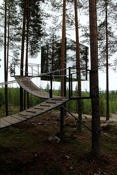 Rooms in the tree hotel - six diferent 'nests' by different designers - aren't cheap, but WOW. http://www.wayfaring.info/2011/08/09/the-hotel-in-the-woods-or-better-on-them/