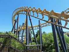 Cobra  Cape Cobras #Ratanga Junction  #SouthAfrica #rollercoaster