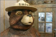 Smokey the Bear!  from the same vintage / retro time period as the old trailers and rvs.