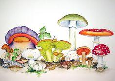 Mushrooms - Pilze Watercolor by Maria Inhoven
