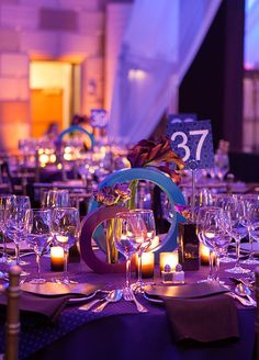 Enchanting Purple Gala