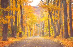 The 6 Best Fall Foliage Drives in New England Photos | Fodor's Travel Guides
