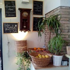 El Café Botánico es uno de nuestros rincones favoritos en Zaragoza, un lugar especial con una atmósfera que te traslada a París, Londres o Nueva York. Casi todas las semanas nos acercamos a desayunar al Café Botánico, una cafetería acogedora, perfecta para perderse a cualquier hora del día y desconectar de la rutina.