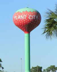 Plant City Water Tower