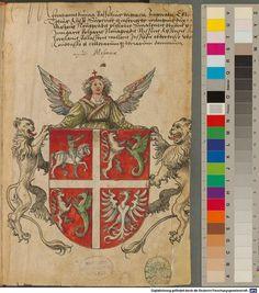 Image 00003 Sammelband mehrerer Wappenbücher - BSB Cod.icon. 391 Faszikel I: Wappen des Großfürstentums Moskau (1r)