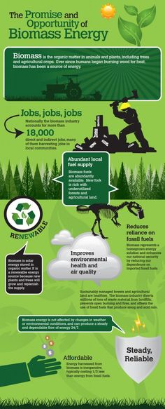 Biomass is biological material from living, or recently living organisms, most often referring to plants or plant-derived materials. Biomass is all biologically-produced matter based in carbon, hydrogen and oxygen. Biomass energy is derived from six distinct energy sources: garbage, wood, plants, waste, landfill gases, and alcohol fuels.  Can this be worth looking into?