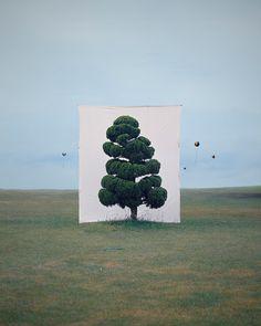 2006 TREE-II photograph: Myong Ho Lee (b1975 Daejon, South Korea).