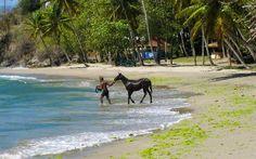 Laborie, St Lucia