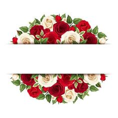 Background With Red And White Roses. Vector Stock Vector - Illustration of flora, leaves: 43854646 Flower Boarders, Flower Frame, Flower Background Wallpaper, Flower Backgrounds, Rose Clipart, Red And White Roses, Red Roses, Wall Hanging Crafts, Graduation Cap Decoration