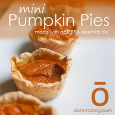 What's better than pumpkin pie? Mini pumpkin pies! Pumpkin pie is a creamy, sweet must-have for most Thanksgiving dinners. These individual servings are the perfect way to finish off your delicious meal. No utensils necessary!
