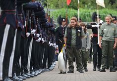 Sir Nils Olav, the knighted king penguin, inspecting the guard.
