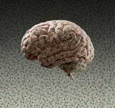 Brain made of dollar bills by Gable Denims on 500px