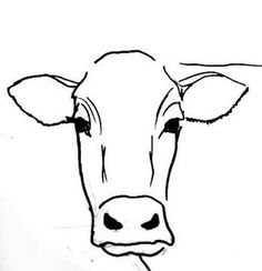 step by step cow drawing face - Google Search                                                                                                                                                                                 More