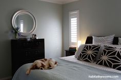 The master bedroom continues the subtle blue palette with the restful Resene Half Periglacial Blue on the walls. Designer Kelly Gammie of Eucalyptus Design. Photography by Becky Nunes. Duck Egg Blue Rooms, Duck Egg Blue Wall, Neutral Color Scheme, Colour Schemes, Hamptons House, The Hamptons, Computer Nook, Blue Palette, Wall Paint Colors