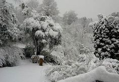 Hogsback Eastern Cape in winter time