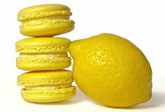 lemon macaroon parlour - Google Search