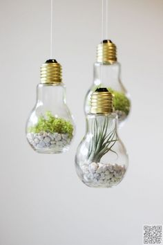 23. Light Bulb #Terrariums - Awesome #Enlightenment! You Have to See These #Things You Can Make with Light Bulbs ... → DIY #Light