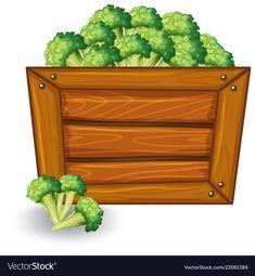 Broccoli on wooden banner vector image on VectorStock Banner Vector, Girl Cartoon, Adobe Illustrator, Broccoli, Cartoons, Clip Art, Nursery, Fruit, Vegetables