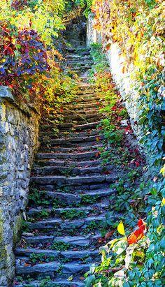 Лестница в прошлое...  Средневековая сказка Каменец-Подольский